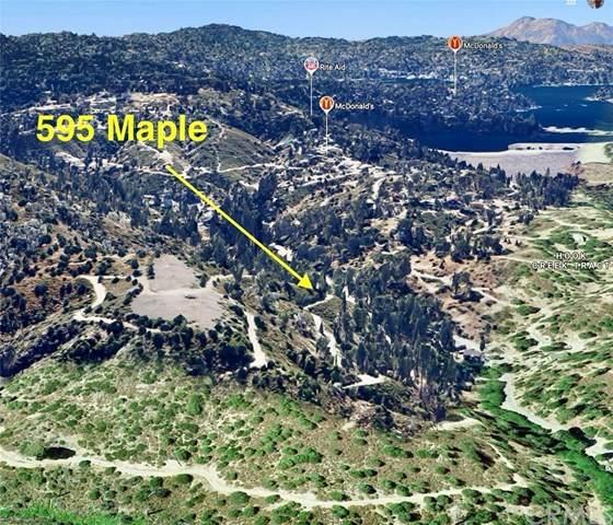 595 Maple Drive, Lake Arrowhead, CA 92352 (#LG21071695) :: Koster & Krew Real Estate Group | Keller Williams