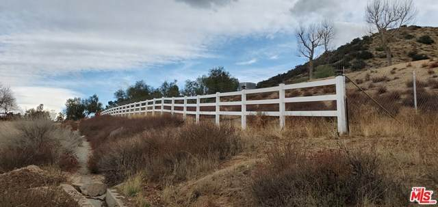8138 Clayvale Road, Agua Dulce, CA 91390 (#21714398) :: Wendy Rich-Soto and Associates