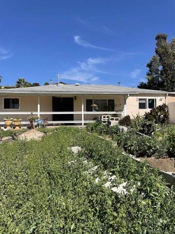 4265 N Cordoba Ave, Spring Valley, CA 91977 (#210008907) :: Koster & Krew Real Estate Group   Keller Williams