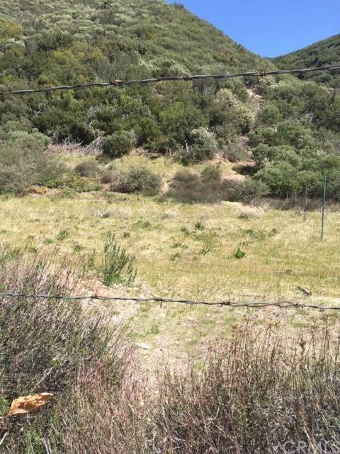 0 Lytle Creek Road, Lytle Creek, CA 92358 (#IV21072786) :: A|G Amaya Group Real Estate