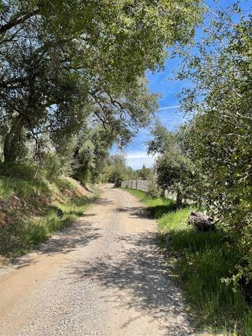 5867 Forest Meadow Rd, Julian, CA 92036 (#210008998) :: Koster & Krew Real Estate Group | Keller Williams