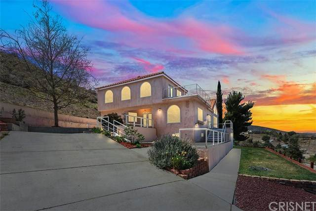 40014 95th Street W, Leona Valley, CA 93551 (#SR21067489) :: Wendy Rich-Soto and Associates