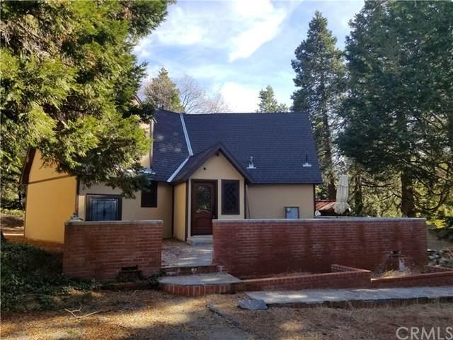 32875 Birch Hill Road, Palomar Mountain, CA 92060 (#SW21073699) :: Koster & Krew Real Estate Group   Keller Williams