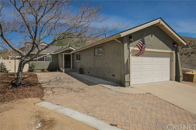 13217 Lonetree Drive, Lake Hughes, CA 93532 (#SR21073769) :: Wendy Rich-Soto and Associates