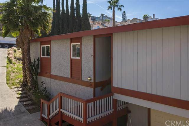 1318 La Mesa Avenue, Spring Valley, CA 91977 (#SW21074001) :: Koster & Krew Real Estate Group   Keller Williams