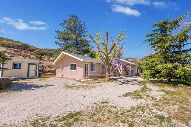 40043 97th Street W, Leona Valley, CA 93551 (#SR21074305) :: Wendy Rich-Soto and Associates