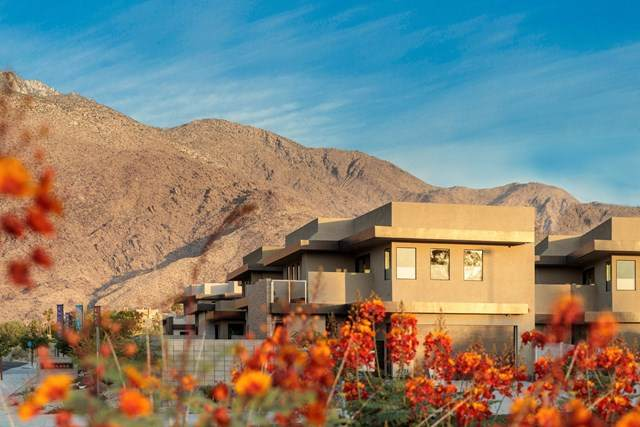 215 S Hermosa Drive, Palm Springs, CA 92262 (#219060232DA) :: Wendy Rich-Soto and Associates