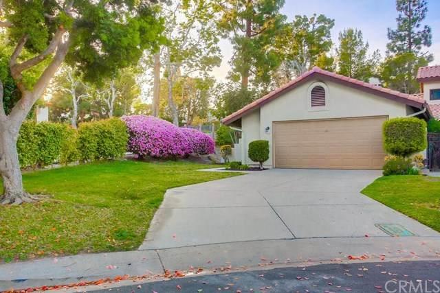 3645 Seahorn Circle, San Diego, CA 92130 (#ND21074462) :: eXp Realty of California Inc.