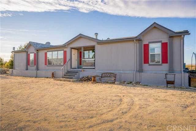 10937 El Dorado Avenue, Rosamond, CA 93560 (#SR21074826) :: Koster & Krew Real Estate Group | Keller Williams