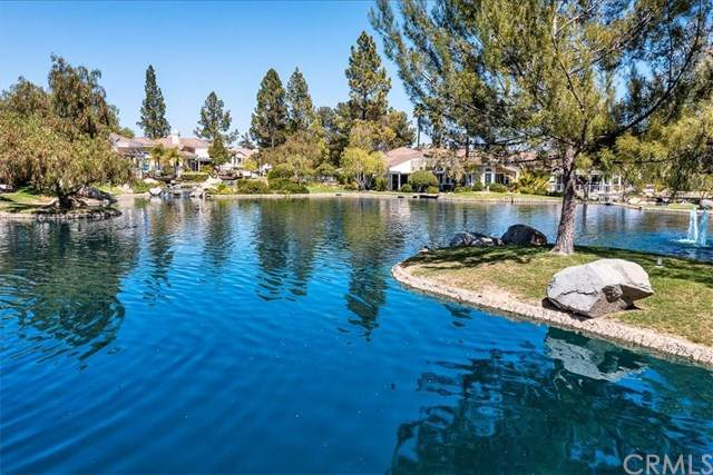 38726 Bears Paw Drive, Murrieta, CA 92562 (#SW21038304) :: EXIT Alliance Realty