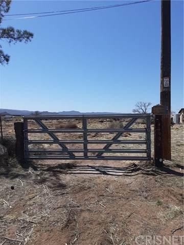 44993 Old #8, Jacumba, CA 91934 (#SR21075070) :: Koster & Krew Real Estate Group | Keller Williams