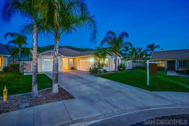 31717 Flowering Plum Ct, Winchester, CA 92596 (#210009334) :: EXIT Alliance Realty