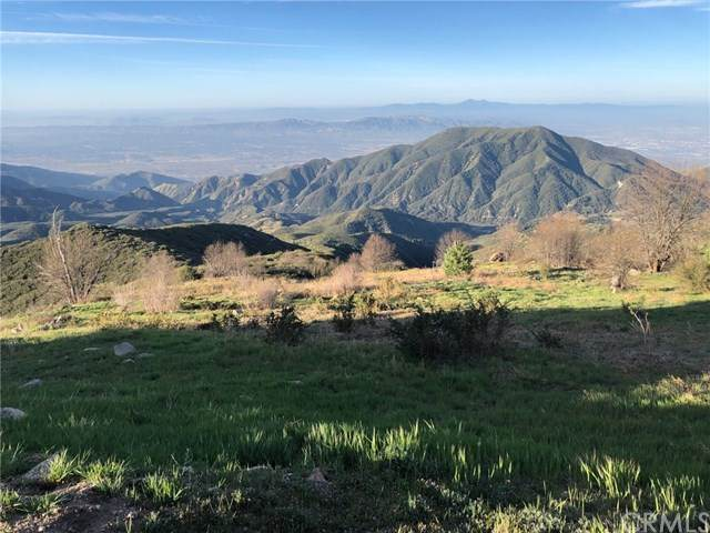 32 Panorama Road, Running Springs, CA 92382 (#EV21075386) :: Koster & Krew Real Estate Group   Keller Williams