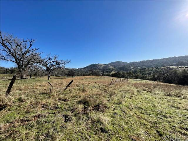 210 Ben Hur, Mariposa, CA 95338 (#MP21075418) :: Twiss Realty