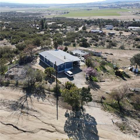 39231 Terwilliger Road, Anza, CA 92539 (#IV21075466) :: Amazing Grace Real Estate   Coldwell Banker Realty