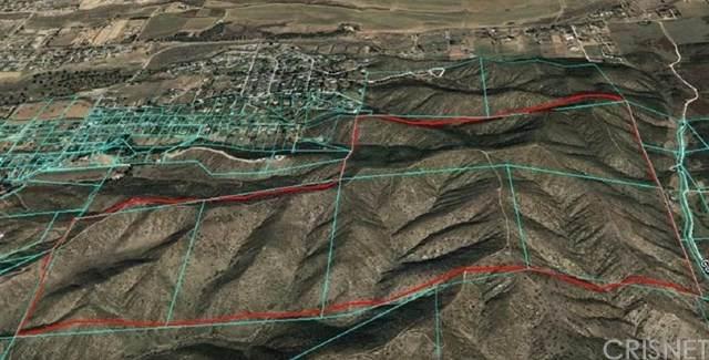 1 Canyon Drive, Yucaipa, CA 92399 (#SR21075054) :: Pam Spadafore & Associates