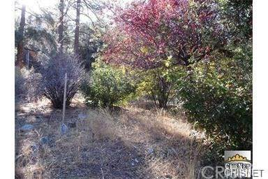 2033 Freeman Drive, Pine Mountain Club, CA 93222 (#SR21075857) :: Koster & Krew Real Estate Group | Keller Williams