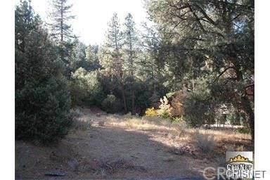 2035 Freeman Drive, Pine Mountain Club, CA 93222 (#SR21075867) :: Koster & Krew Real Estate Group | Keller Williams