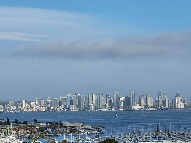 1150 Akron St, San Diego, CA 92106 (#210009411) :: Crudo & Associates
