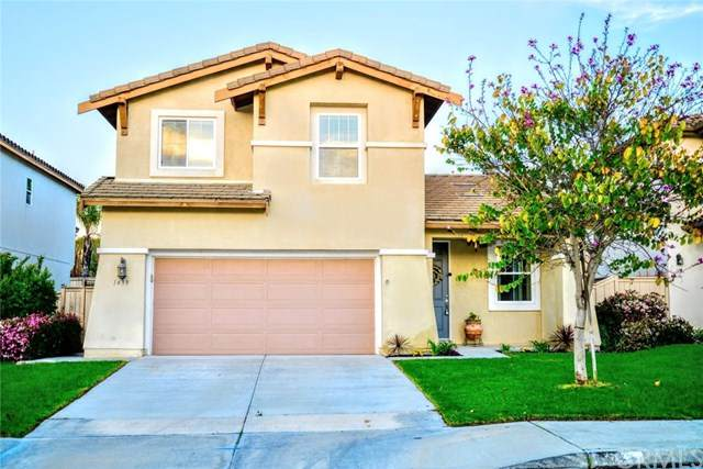1439 Marble Canyon Way, Chula Vista, CA 91915 (#SB21075781) :: Steele Canyon Realty