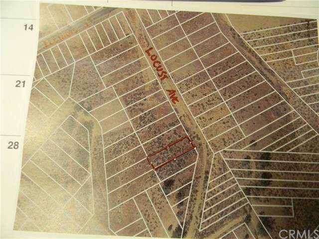0 Locust Street, Lake Elsinore, CA 92530 (#SW21076358) :: Power Real Estate Group