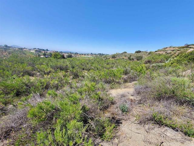 1 Otto Ave, Alpine, CA 91901 (#NDP2103894) :: Steele Canyon Realty