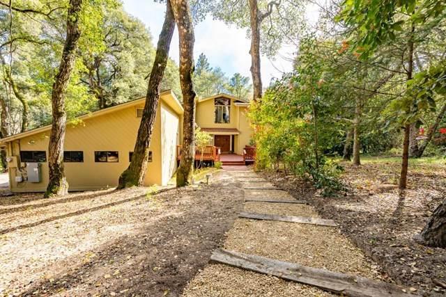 1882 Pine Flat Road, Santa Cruz, CA 95060 (#ML81838614) :: Doherty Real Estate Group