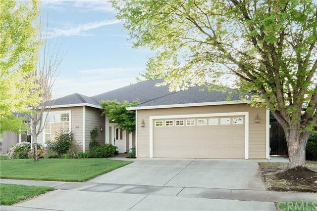 2844 Lucy Way, Chico, CA 95973 (#SN21073850) :: The Laffins Real Estate Team