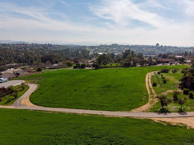 6 Grey Rabbit Hollow Ln, Fallbrook, CA 92082 (#NDP2103903) :: Power Real Estate Group