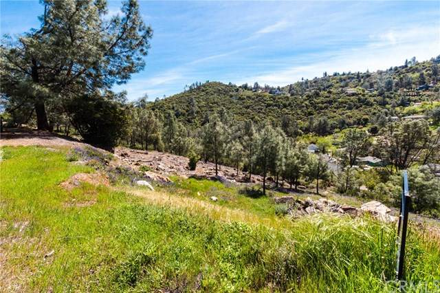 4720 Iroquois, Kelseyville, CA 95451 (#LC21071747) :: The Najar Group