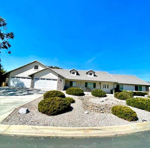 19778 Kip Court, Apple Valley, CA 92308 (#534084) :: Steele Canyon Realty