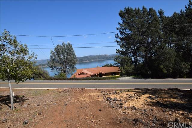 8265 N Heights Drive, Kelseyville, CA 95451 (#LC21076672) :: Steele Canyon Realty