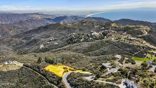 23333 Saddle Peak Road, Topanga, CA 90290 (#221001894) :: Wendy Rich-Soto and Associates