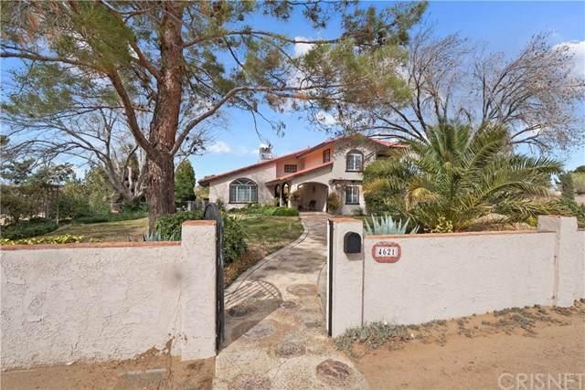 4621 W Avenue K12, Quartz Hill, CA 93536 (#SR21075497) :: Mainstreet Realtors®