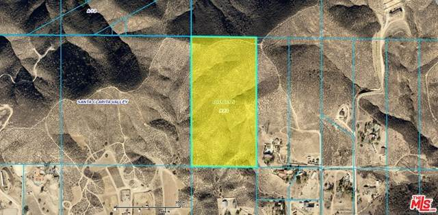 0 Lewis Hill Road, Agua Dulce, CA 91350 (#21718844) :: Wendy Rich-Soto and Associates