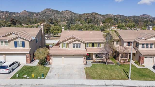 25338 Chesterfield Lane, Wildomar, CA 92595 (#SW21077734) :: Power Real Estate Group