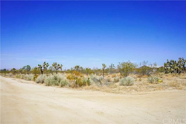 1316 Duncan Road, Pinon Hills, CA 92372 (#EV21076675) :: eXp Realty of California Inc.