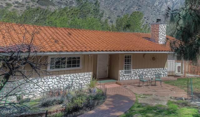 4131 Big Tujunga Canyon Road - Photo 1