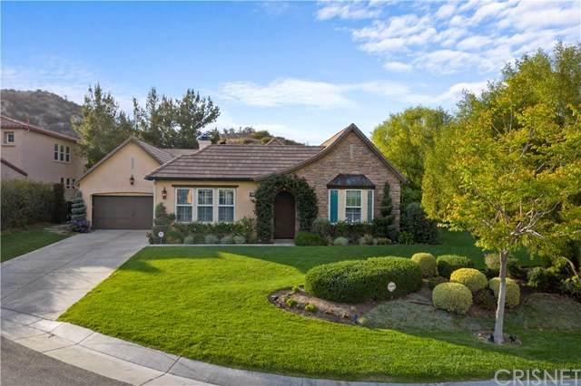 27103 Buckskin Lane, Canyon Country, CA 91387 (#SR21078640) :: The Kohler Group