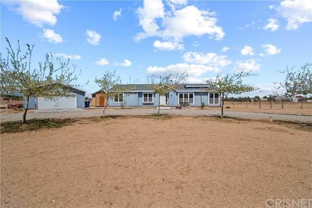 8313 W Avenue D4, Antelope Acres, CA 93536 (#SR21079032) :: Wendy Rich-Soto and Associates