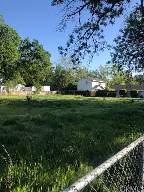1164 E. 10th Street, Chico, CA 95928 (#SN21079145) :: The Laffins Real Estate Team