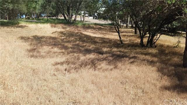 15534 22nd Avenue, Clearlake, CA 95422 (#LC21079821) :: RE/MAX Empire Properties