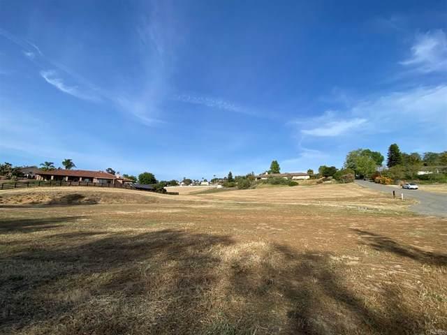 930 La Felice Ln, Fallbrook, CA 92028 (#NDP2104077) :: Power Real Estate Group
