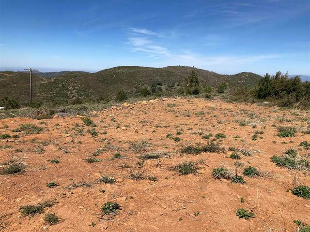 0 Hwy 79, Julian, CA 92036 (#PTP2102595) :: The Costantino Group | Cal American Homes and Realty