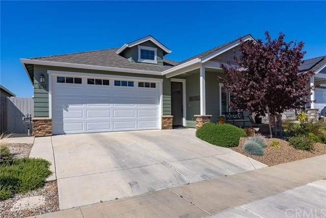 1132 Shumard Oak Way, Chico, CA 95928 (#SN21077041) :: The Laffins Real Estate Team