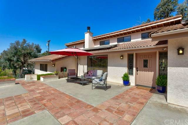 3203 Green Canyon Road, Fallbrook, CA 92028 (#ND21080563) :: Power Real Estate Group