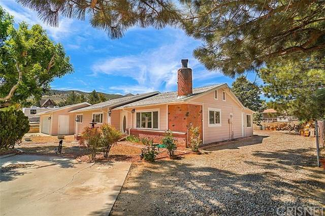 40243 W 92nd Street W, Leona Valley, CA 93551 (#SR21081472) :: eXp Realty of California Inc.