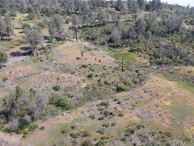 0 Wayland Road, Paradise, CA 95969 (#SN21081049) :: The Laffins Real Estate Team
