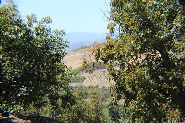 11 Las Palmeras, Temecula, CA 92590 (#SW21081686) :: Power Real Estate Group