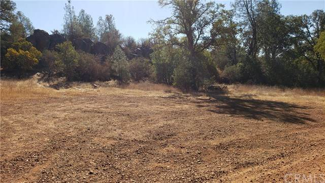 16346 14th Avenue, Clearlake, CA 95422 (#LC21081815) :: Zember Realty Group